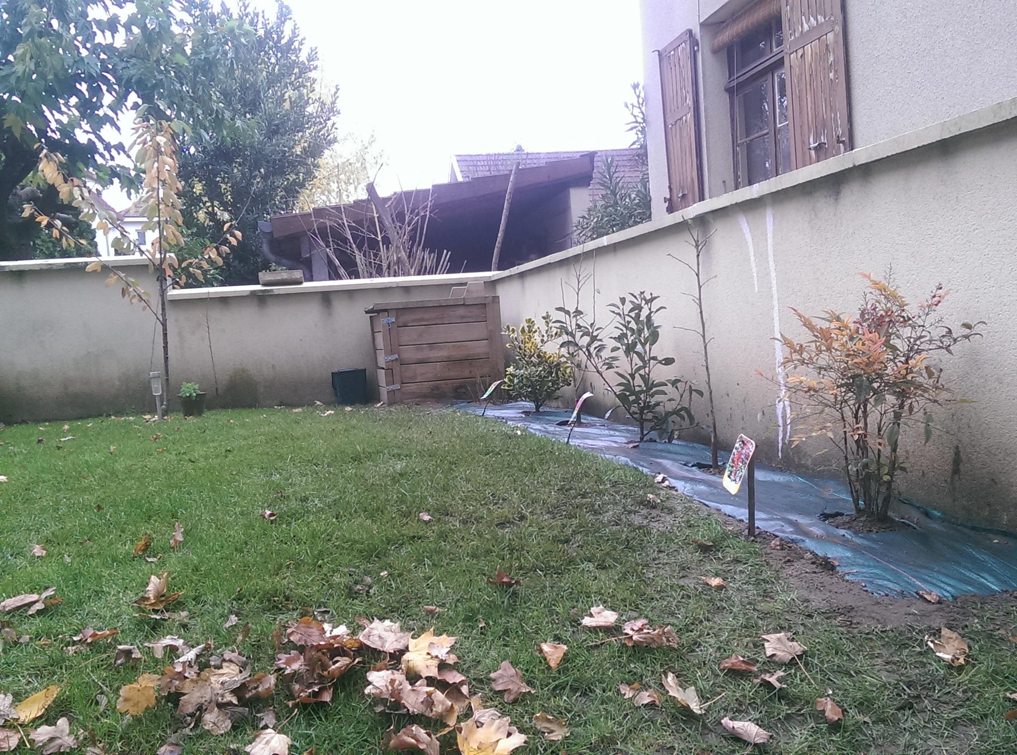 Plantations avant l 39 hiver la maison des rigolettes for Jardin hiver plantation
